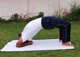 Viprita Dandasana Yoga and its benefits