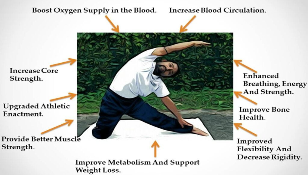 Yoga Beneficial for Muscle Building
