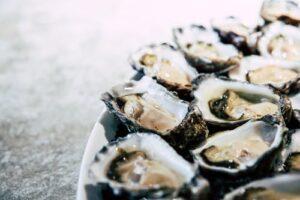 oyster Zinc Rich Food
