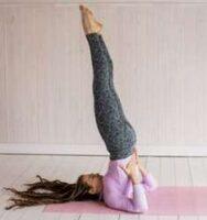 Sarvangasana yoga cholesterol