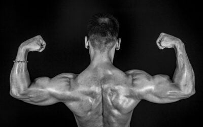 exercise for Muscular and V shape Back