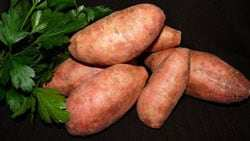 Sweet-potato Food for Macular Degeneration