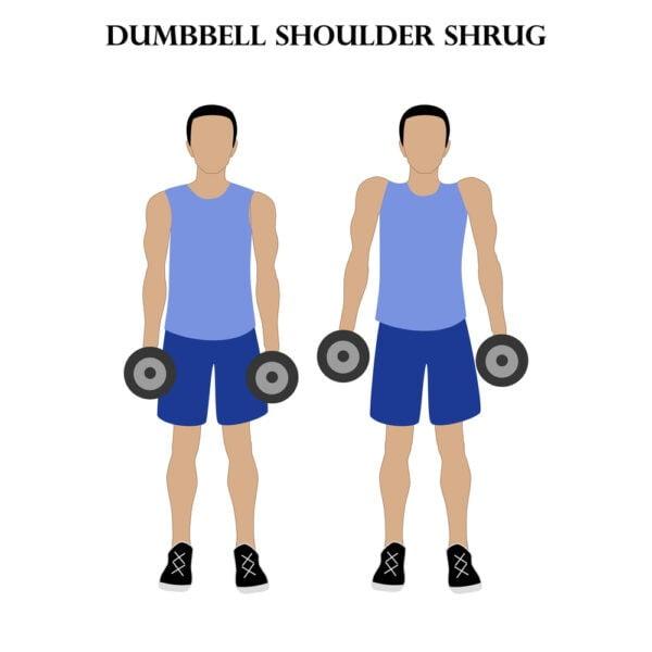 Shoulder Shrug Exercise