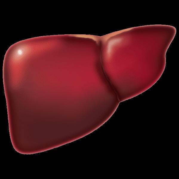 liver What Does Prunes Juice Taste Like
