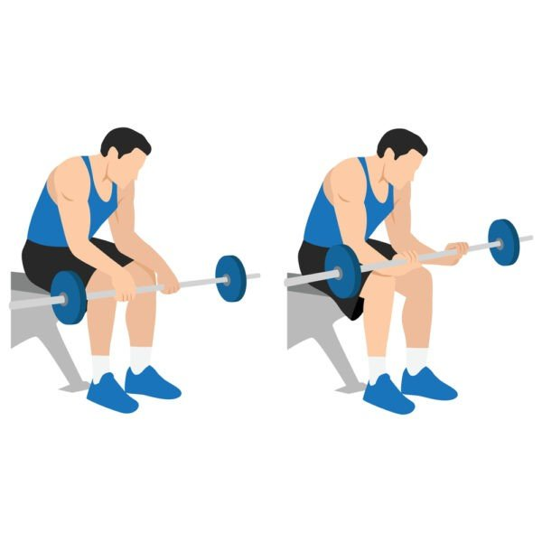 Wrist Curls Upper Body Exercises