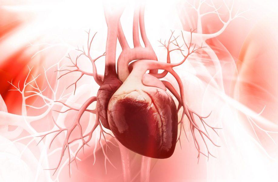 heart Pakhala boost immunity