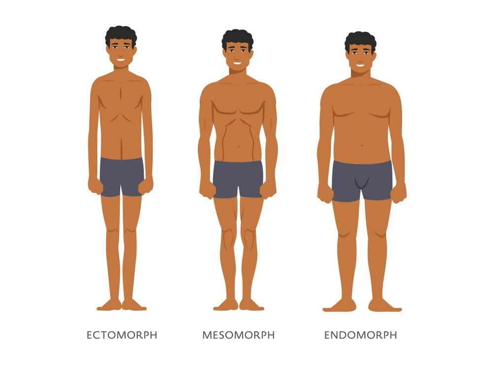 Routine and Diets for Men and Their Body Types