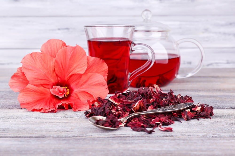 how to make hibiscus tea from fresh flowers