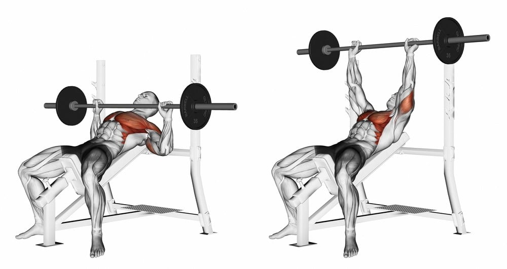 Incline Bench Press with Barbell