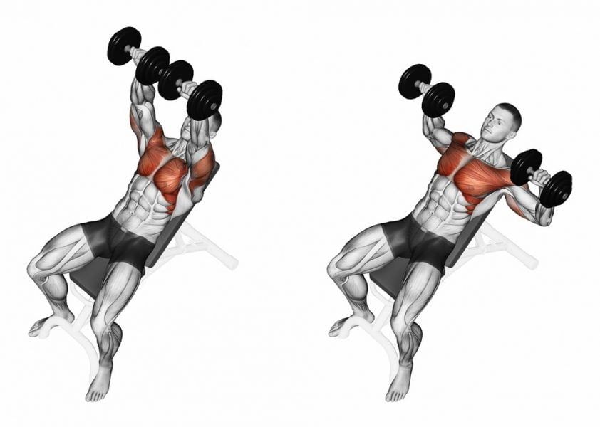 incline bench press with dumbbell